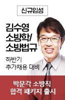 김수영 교수